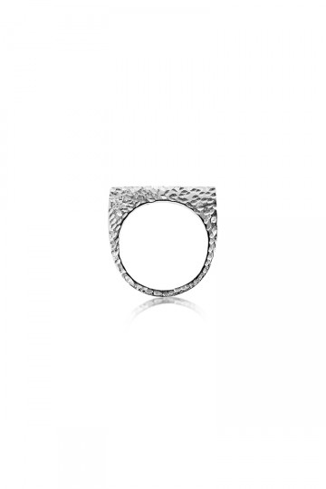 Single Plate Ring